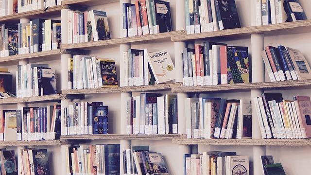 domácí knihovna